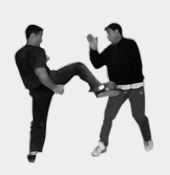 jeet kune do group